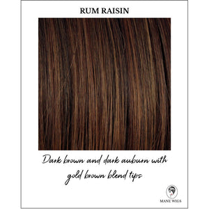 Rum Raisin-Dark brown and dark auburn with gold brown blend tips