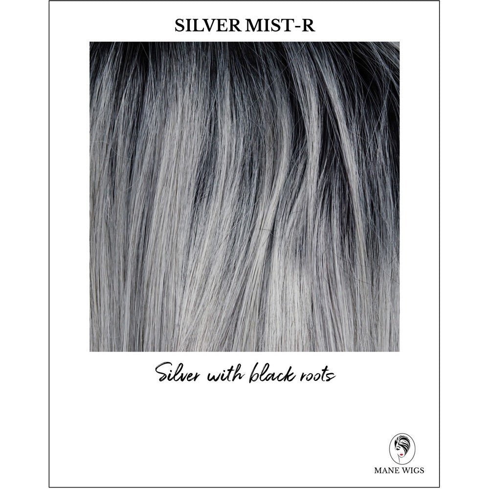 Silver Mist-R-Silver with black roots