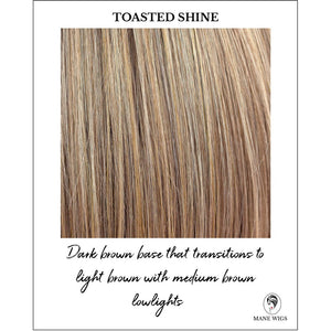 Toasted Shine-Dark brown base that transitions to light brown with medium brown lowlights