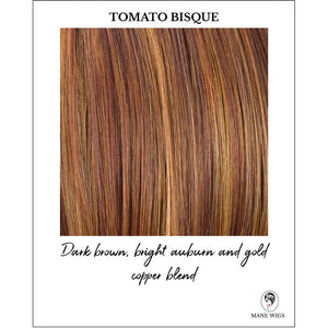 Tomato Bisque-Dark brown, bright auburn and gold copper blend