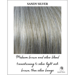 Sandy Silver-Medium brown and silver blend transitioning to silver light ash brown, then silver bangs