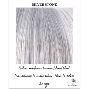 Silver Stone-Silver medium brown blend that transitions to more silver, then to silver bangs