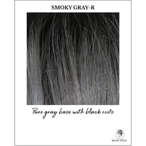 Smoky Gray-R-Pure gray base with black roots