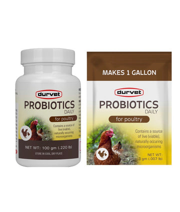 Daily Probiotics for Poultry