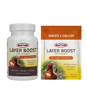 Layer Boost for Layer Chickens