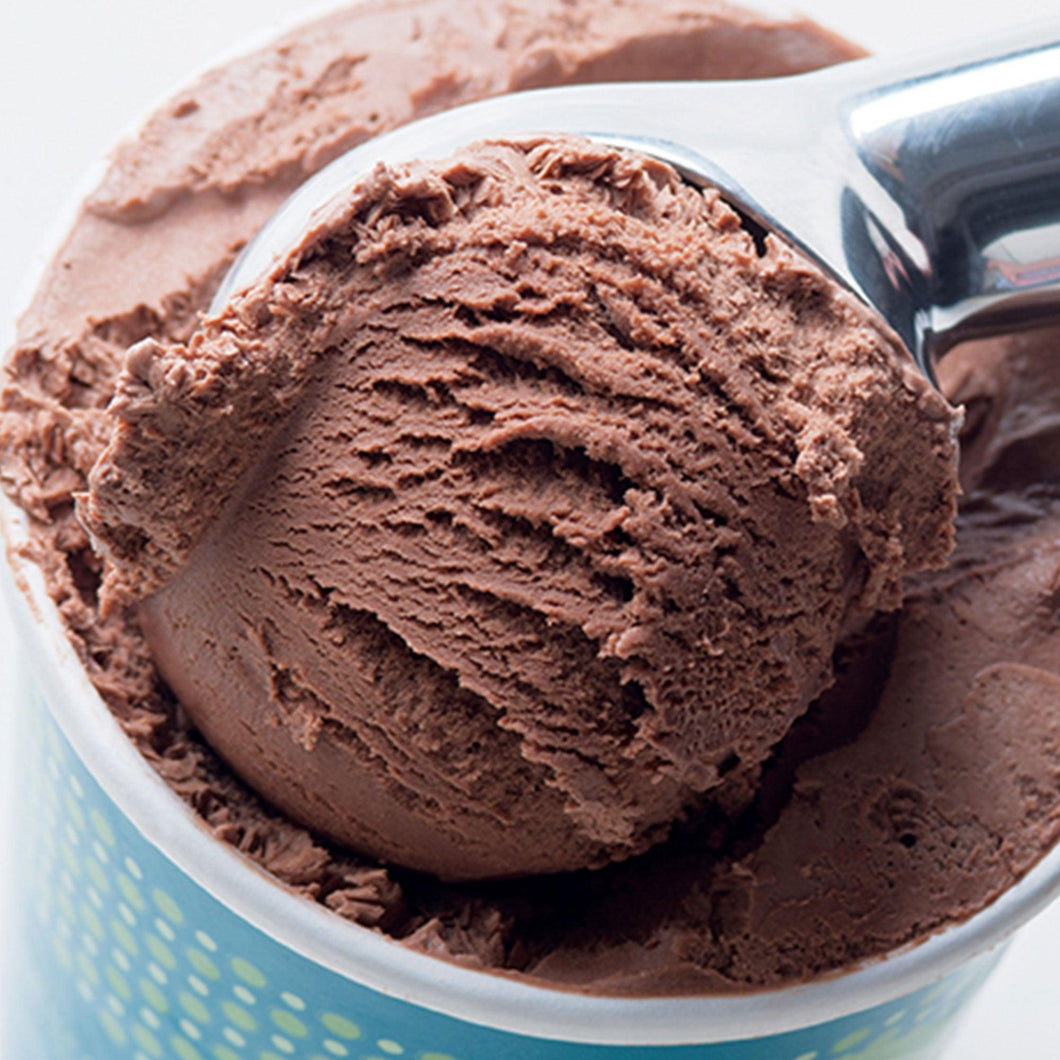 1 Pint - Chocolate Ice Cream - eCreamery
