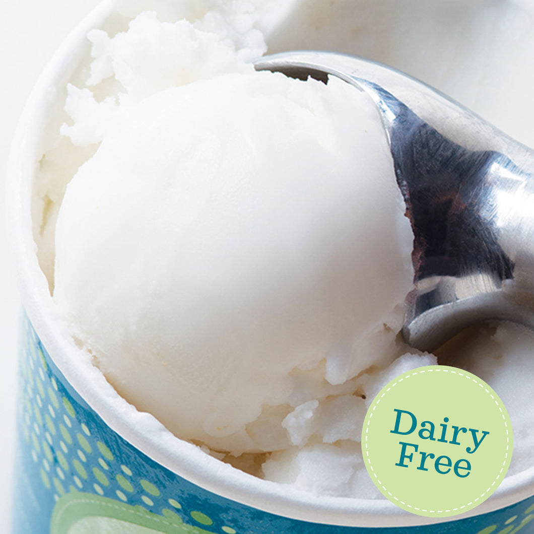 Lemon Sorbet (Dairy Free) - eCreamery