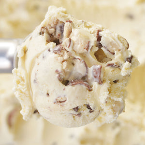 Malted Milk Ice Cream - eCreamery