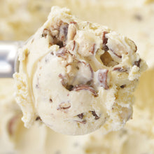Load image into Gallery viewer, Malted Milk Ice Cream - eCreamery