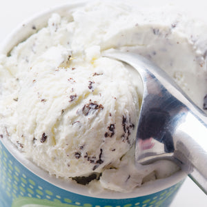 Mint Chip Ice Cream - eCreamery