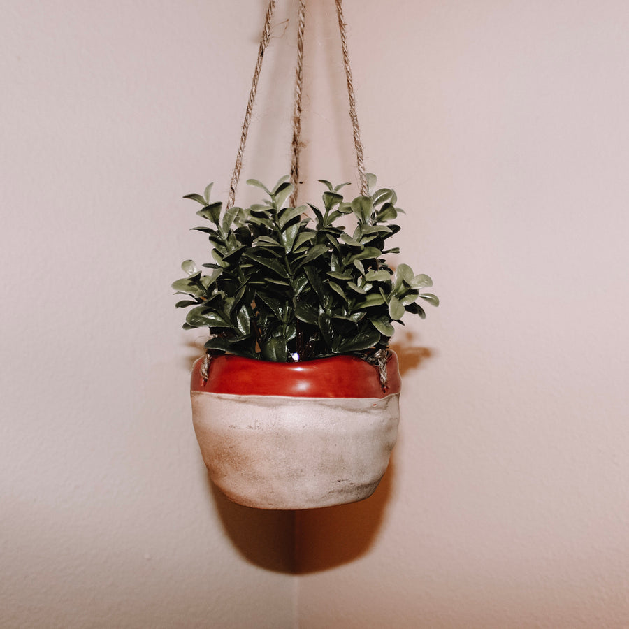 How's It Hanging? Red Hanging Planter