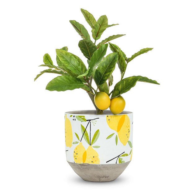Lemon Planter