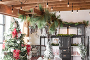 6'L Long Needle Pine Garland with Pinecones