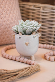 Grey-Green Flocked Succulent Pick