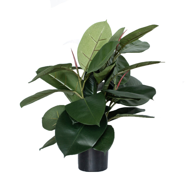 "20"" Faux Rubber Plant in Pot"