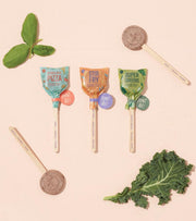 Stir Fry Seed Lollipop