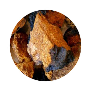 Chaga Mushroom Chunks | (Product of USA) -11Lbs
