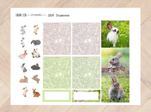 Load image in Gallery view, General collection 2109 Students