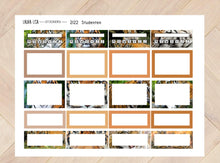 Load image in Gallery view, General collection 2122 Students