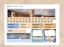 Load image into Gallery view, General collection SMALL 2134