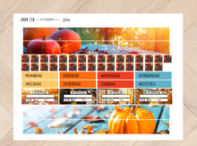 Load image into Gallery view, Extension Set for Collection 2146