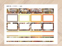Load image into Gallery view, Extension Set for Collection 2149
