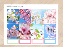 Load image in Gallery view, General collection ENG EC2099