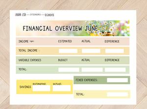 Sticker sheet financial overview June (English) EC8015