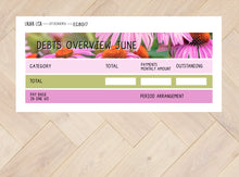 Load image in Gallery view, June financial summary (English)