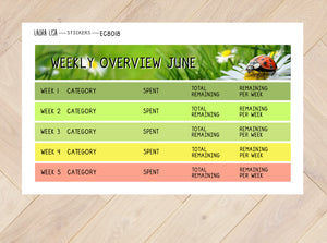 combi financial overview June (English)