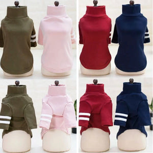 Fitted Turtleneck with Arm Stripe - Multiple Colors