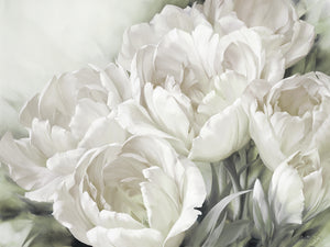 Angelique Tulips II White Canvas Art