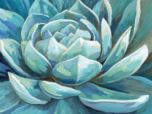Cerulean Succulent Canvas Prints