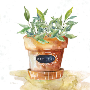 Potted Bay Leaf Canvas Art