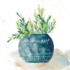 Potted Rosemary Canvas Art