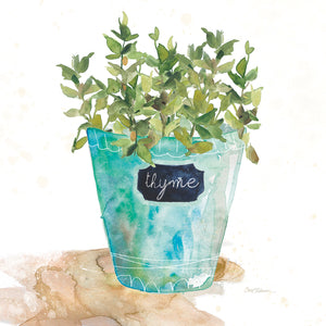 Potted Thyme Canvas Art