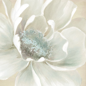 Winter Blooms I Canvas Art