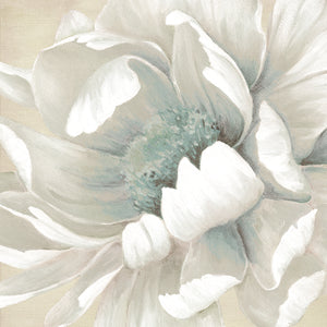 Winter Blooms II Canvas Art