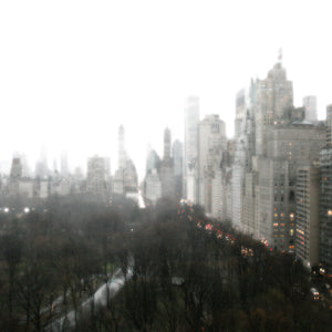 Above Central Park Canvas Art