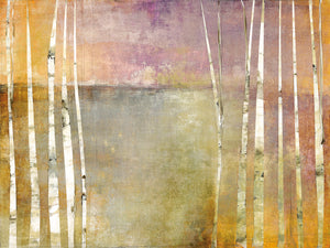 Birch 3 Canvas Art