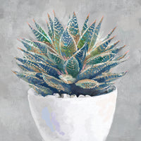 Potted Succulent I Canvas Art