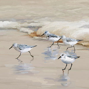 Sandpiper Beach I Amber Canvas Prints