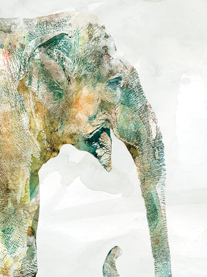 African Colors Elephant Canvas Art