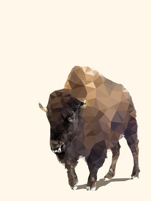 Fractal Bison Ivory Canvas Art