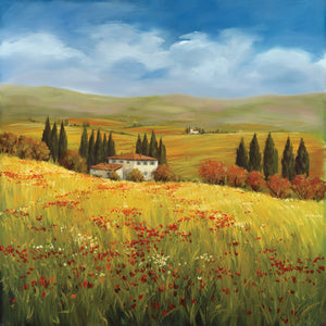 Lo Splendor De La Toscana Canvas Art