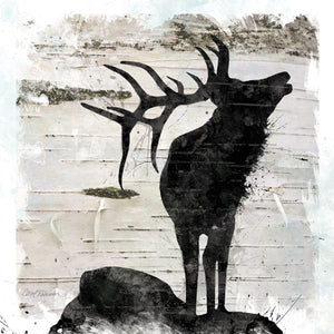 Birchbark Elk Canvas Art