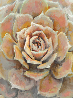 Desert Bloom Canvas Art