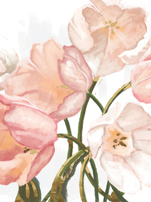 Pink Blush Tulips Canvas Art