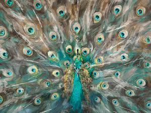 Peacock Colors Canvas Art