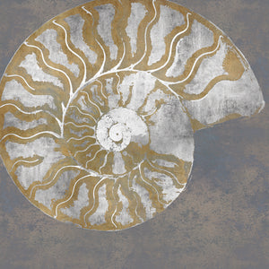 Nautilus I Canvas Art